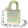 American Lock A5200GLN Government Padlocks with Optional 9in Chain