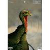Birchwood Casey Dirty Bird PreGame Animal Targets Turkey 12x18 Inch 100 Per Package 35413